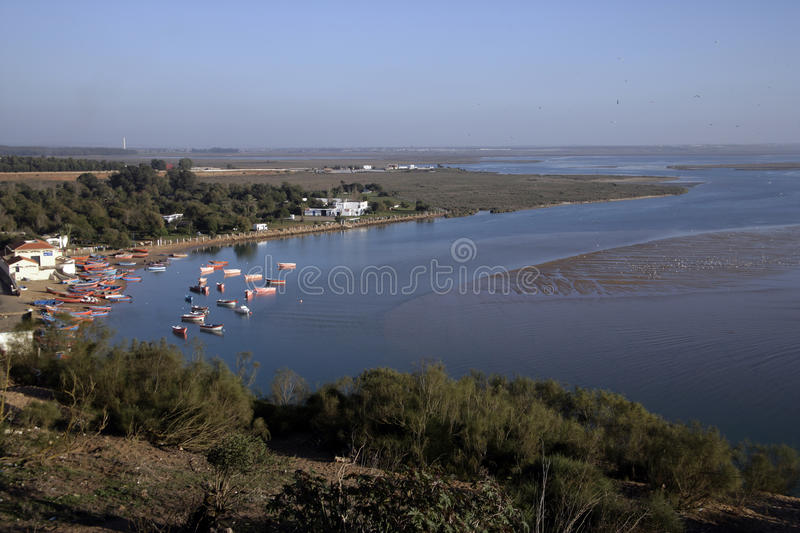 Moulay Bousselham Reserve, immagine stock