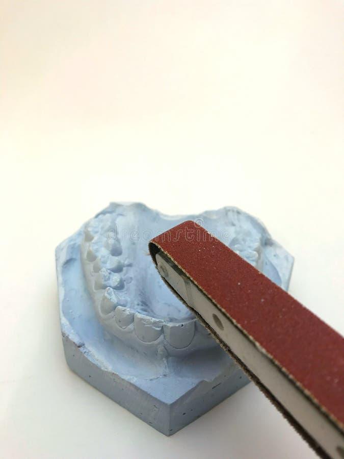Moule dentaire de modèle de gypse des dents en plâtre avec des lunettes de soleil et des écouteurs images libres de droits