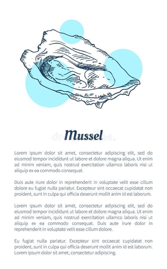 Moule Marine Creature Hand Drawn Poster avec le texte illustration de vecteur
