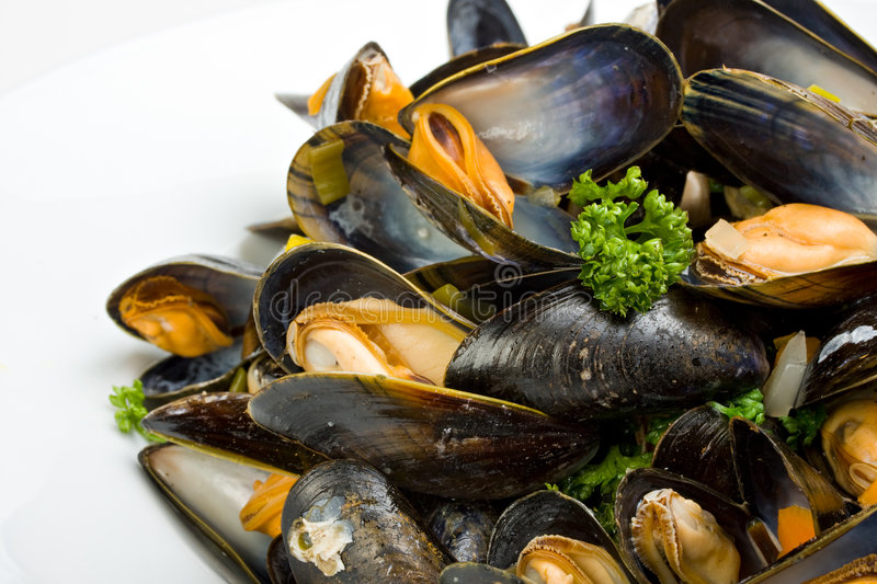 Download Moules image stock. Image du shellfish, fond, clamshell - 8654181