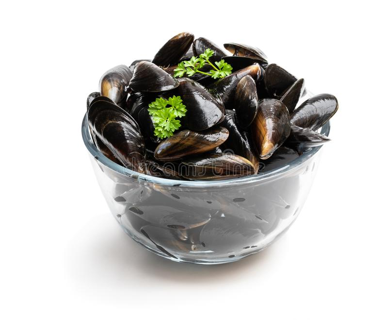 Moules crues dans le bol en verre d'isolement sur le blanc photo libre de droits