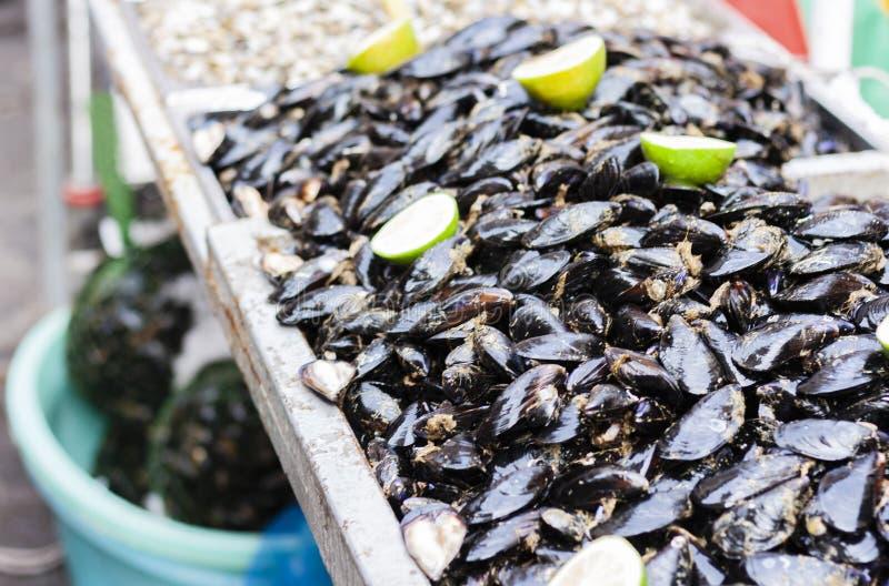 Moules crues dans les coquilles à vendre sur la poissonnerie de Catane, Sicile, Italie images libres de droits