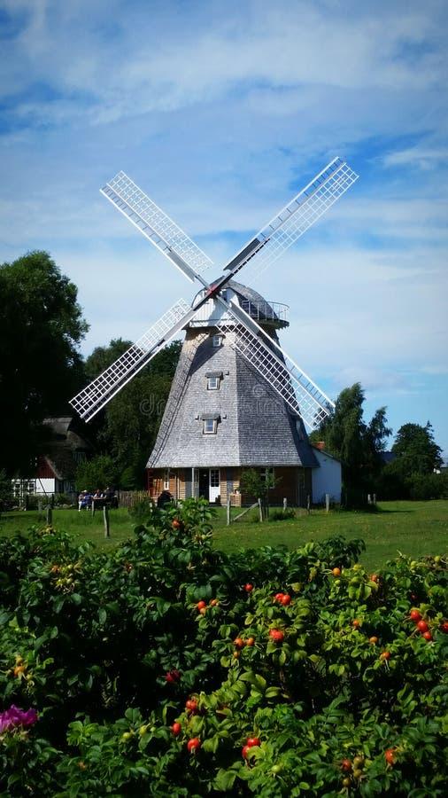 Download Moulin à vent Ahrenshoop image stock. Image du windmill - 76080951