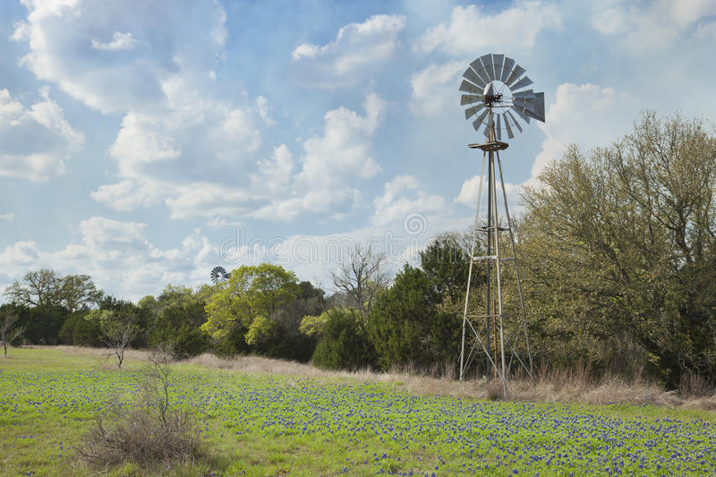 Moulin à vent et bluebonnets dans Texas Hill Country image stock
