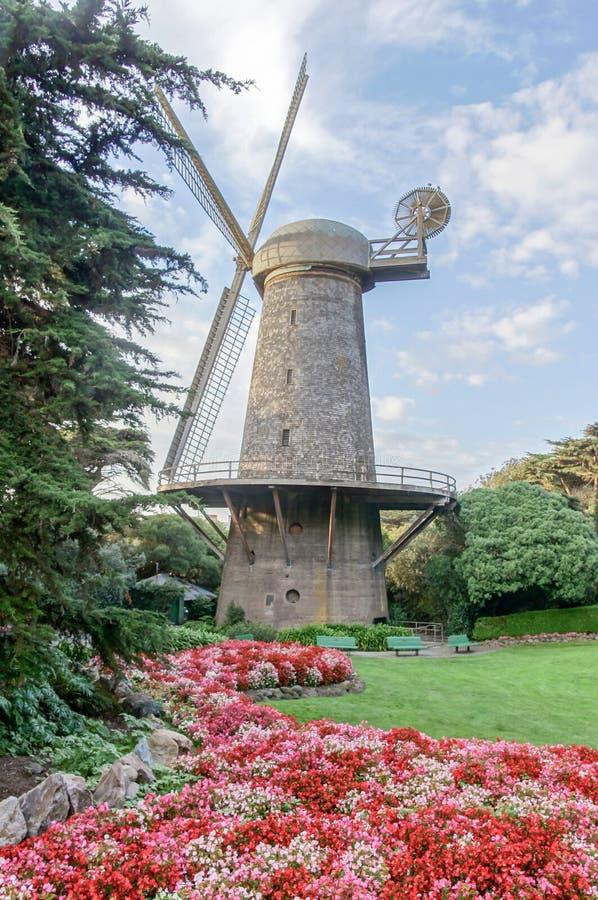 Moulin à vent et Reine néerlandais Wilhelmina Tulip Garden images stock