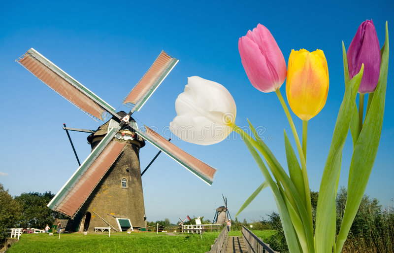 Moulin à vent et tulipes images stock