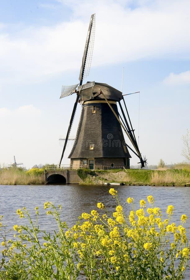 Moulin à vent Hollande photo libre de droits