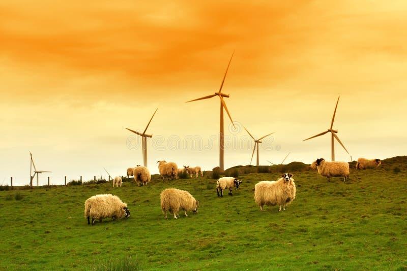 moulin à vent moderne de crépuscule photo stock