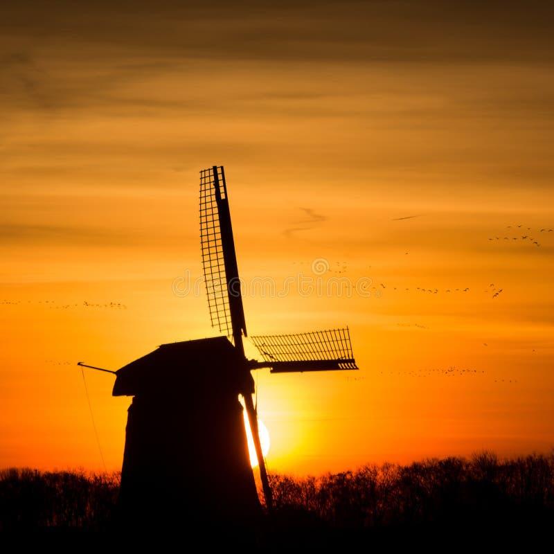Moulin à vent néerlandais rétro-éclairé pendant le lever de soleil image stock