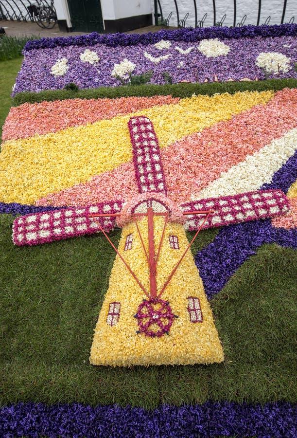 Moulin à vent traditionnel fait de jacinthes au défilé traditionnel Bloemencorso de fleurs à partir de Noordwijk à Haarlem aux Pa photos stock