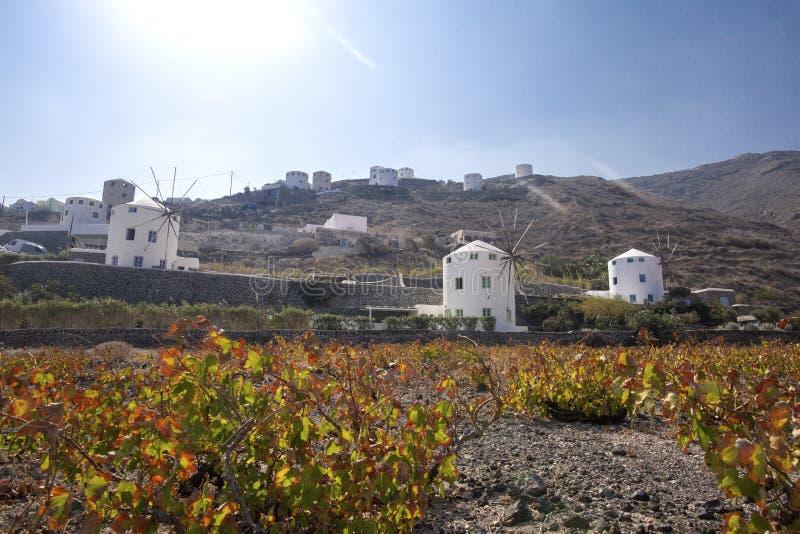 Moulin à vent typique dans Santorini Les bâtiments blancs sur une colline, un moulin à vent et des arbres, est typique pour Santo images stock