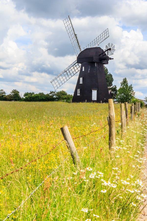 Moulin à vent vert de dentelle photo stock