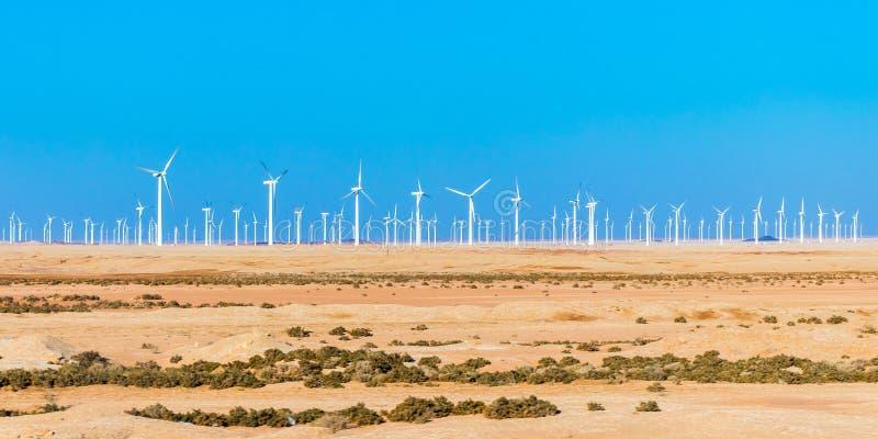 Moulins ? vent pour la production d'Electric Power photos stock