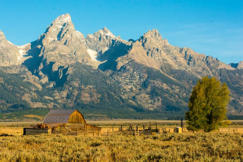 Moultonschuur in het Nationale Park van Grand Teton stock afbeelding