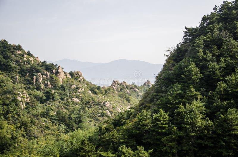 mounains、森林和湖 库存照片