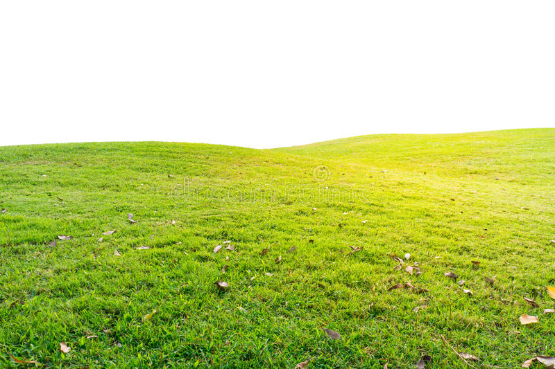 Mound with grasses covering it stock photography