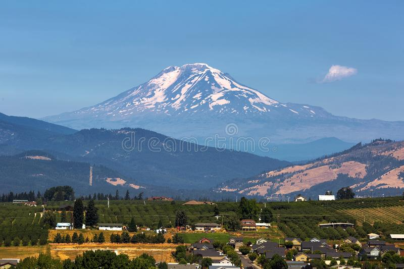 Mount Adams over Hood River Valley in Oregon. Mount Adams over Hood River Valley Fruit Orchards in Oregon on a clear blue sky sunny day stock photography