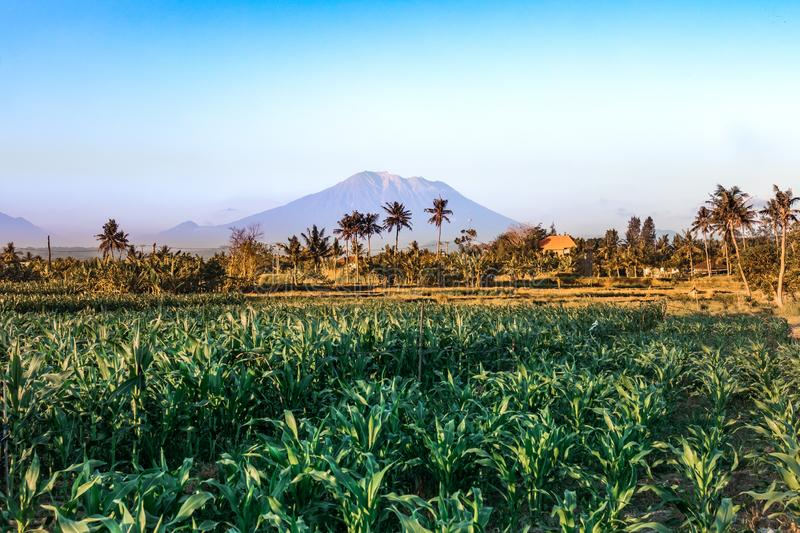 Mount Agung landscape. Holy Volcano Agung. Bali island. stock photography
