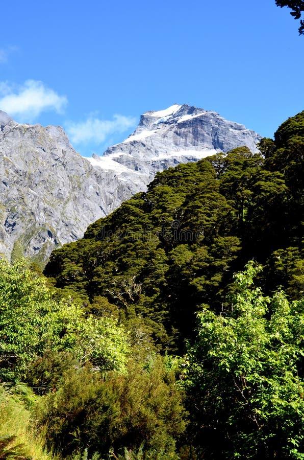 Mount Alba, Gillespie Pass, stock image