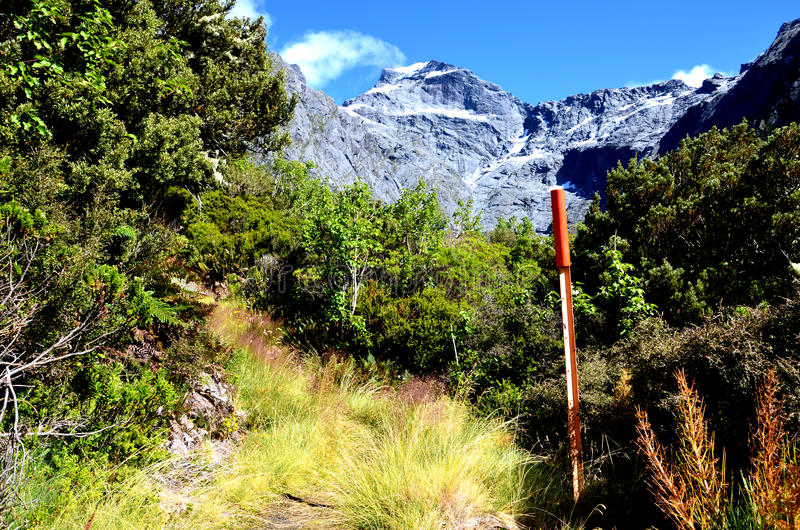 Mount Alba, Gillespie Pass stock photo