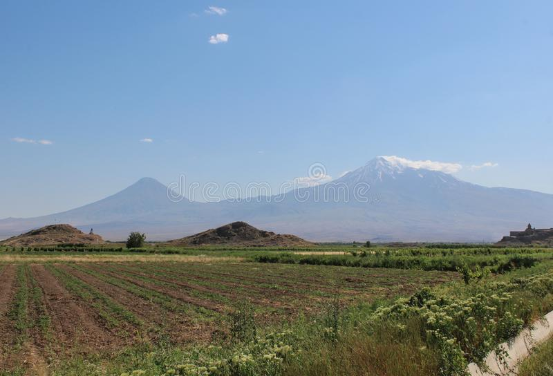 Mount Ararat from distance with green fields stock photo