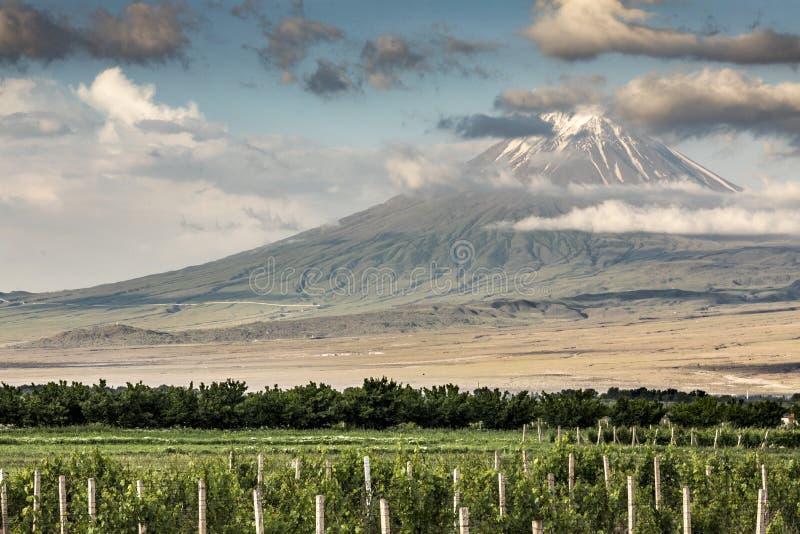 Mount Ararat i ett landskap av Armenien arkivfoto