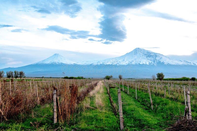 Mount Ararat Sluttningarna av det bibliska berget, som är en utdöd vulkan royaltyfria foton