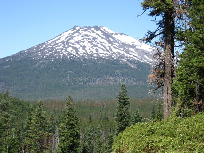 Mount Bachelor, Central Oregon royalty free stock photos