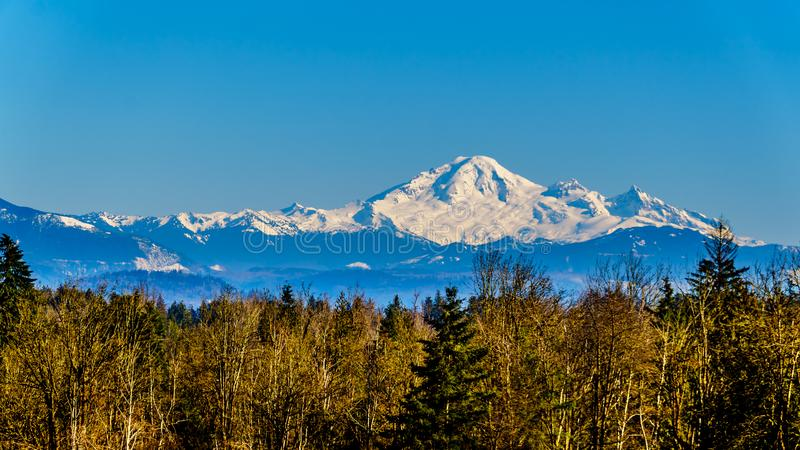 Mount Baker from Glen Valley near Abbotsford BC Canada. Mount Baker, a dormant volcano in Washington State viewed from the Blueberry Fields of Glen Valley near royalty free stock photo