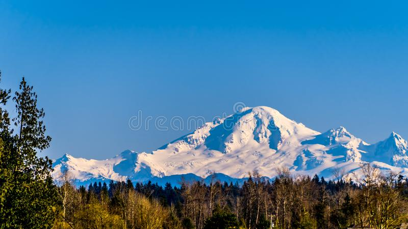 Mount Baker, a dormant volcano in Washington State viewed from Glen Valley near Abbotsford British Columbia, Canada. Under clear blue sky on a nice winter day royalty free stock photography