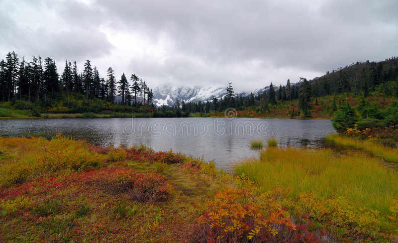 Mount Baker National Park. Fall scenery at the Mount Baker National Park royalty free stock images