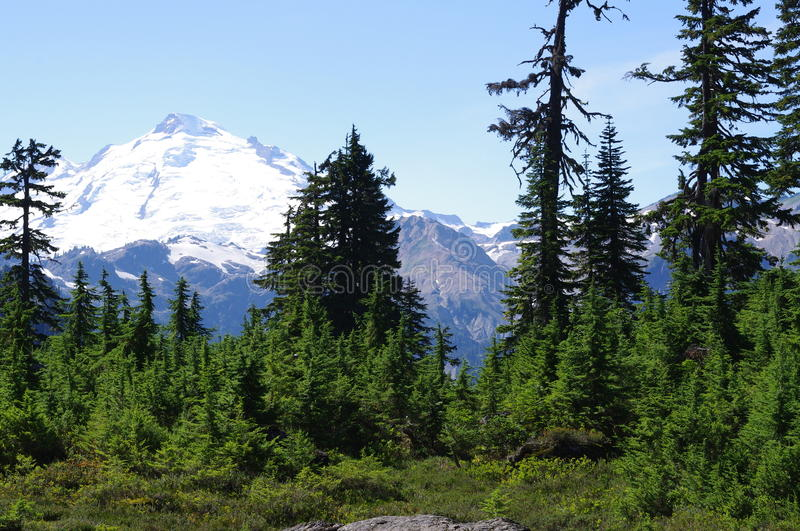 Mount Baker in Washington State. Mount Baker known as Koma Kulshan, one of a few glaciated volcanoes in the Cascade Range volcanoes in Washington State, USA stock images