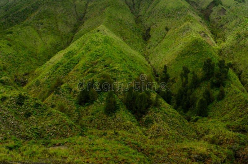 Mount Bromo and Mount Batok royalty free stock images