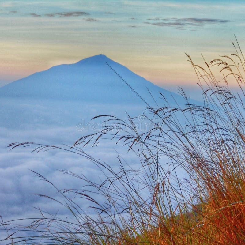Mount cikuray view from mount guntur. Ocean on the clouds stock image