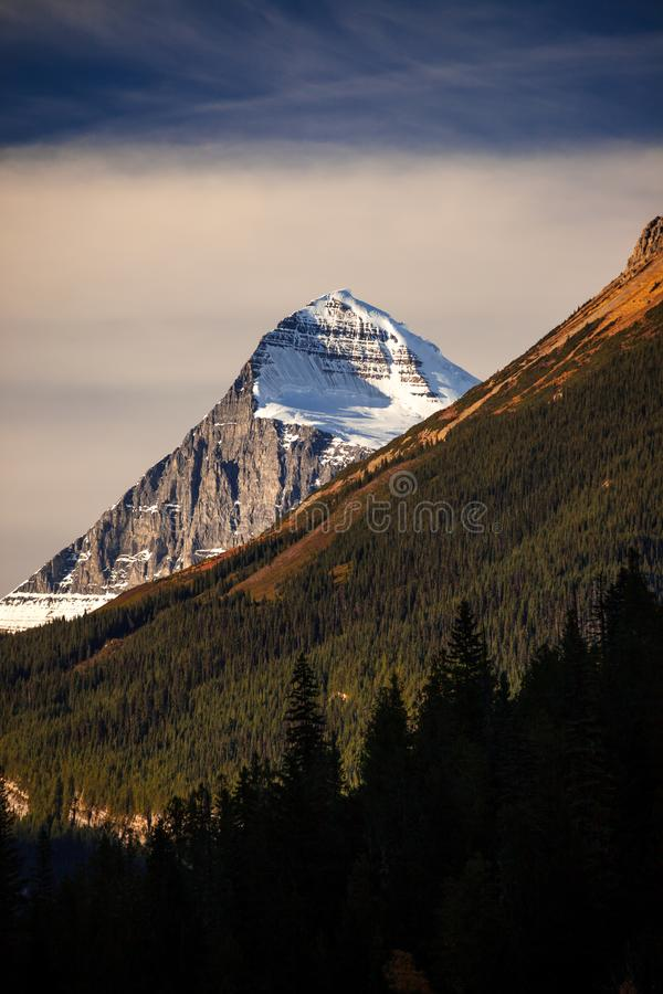 Mount Columbia, tallest peak in Alberta, Canada royalty free stock photos