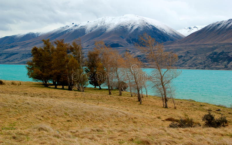 Download Mount Cook New Zealand stock photo. Image of hike, height - 28149540