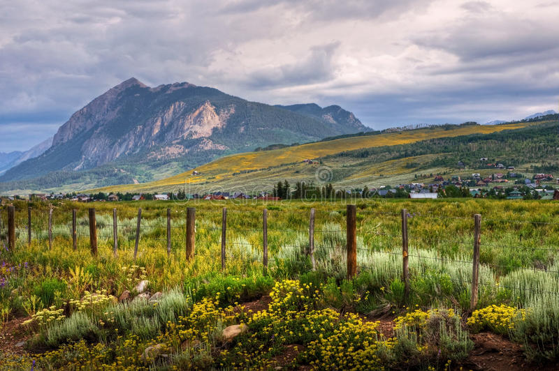 Mount Crested Butte. The wildflowers cover the mountains and valleys of picturesque Crested Butte, Colorado stock photography