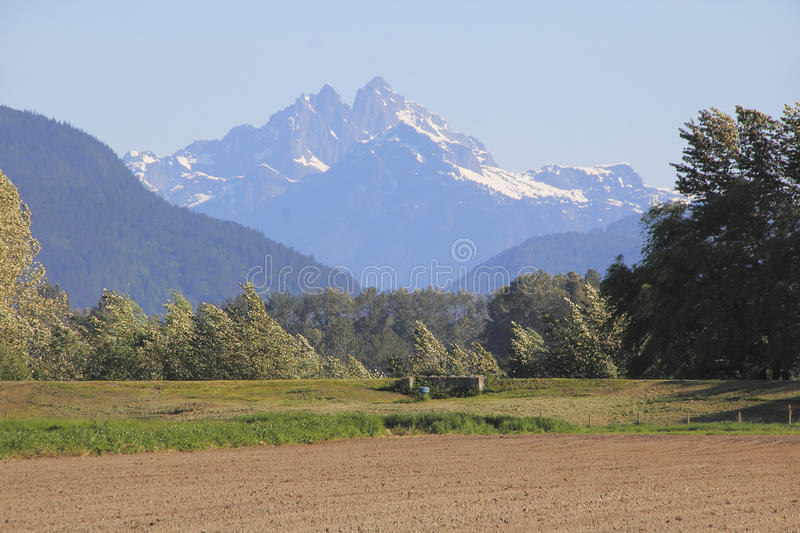 Mount Crickmer British Columbia royalty free stock images
