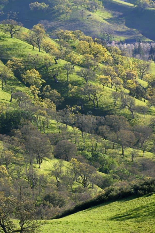 Mount Diablo stock photos