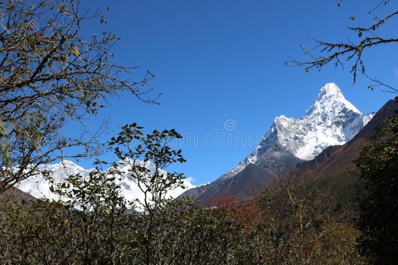 Mount Everest привлекает много альпинистов, сильно опытные альпинистов стоковое фото