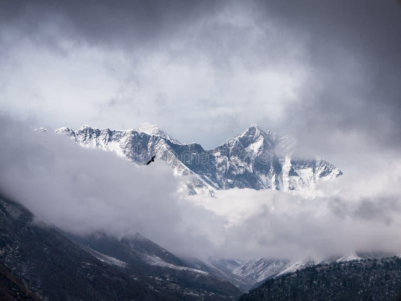 Mount Everest Peak & Eagle stock photos