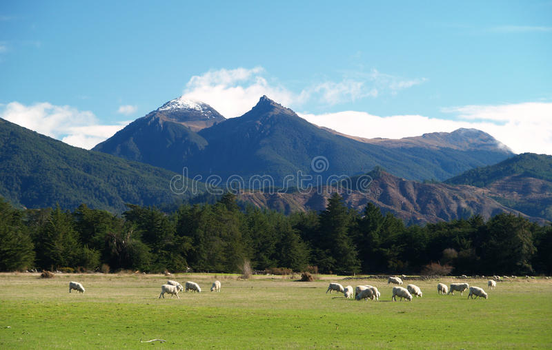 Mount Fishtail. With snowy top, Marlborough, New Zealand stock photography