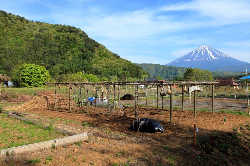 Mount Fuji & плато Asagiri стоковые изображения rf