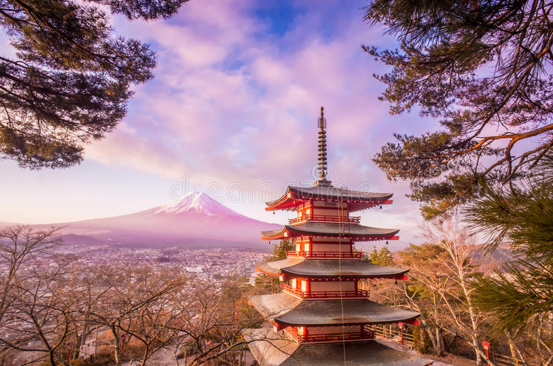 Mount Fuji royaltyfri foto