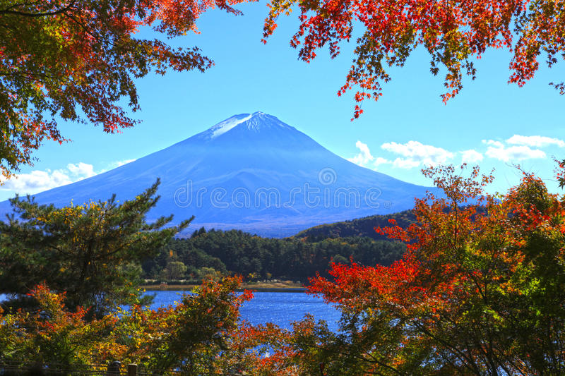 MOUNT FUJI AT AUTUMN. Mount Fuji with a frame of autumn maple leaves along the bank of Lake Kawaguchi in Japan royalty free stock photo