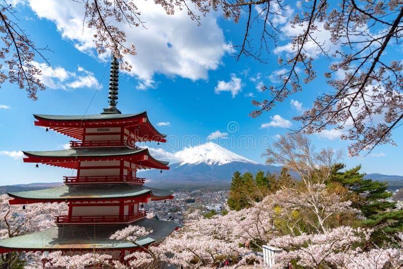 Mount Fuji beskådade bakifrån blomningar för oavkortad blom för den Chureito pagoden körsbärsröda royaltyfria bilder