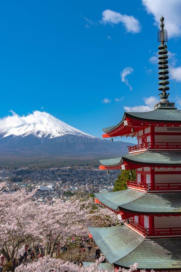 Mount Fuji beskådade bakifrån blomningar för oavkortad blom för den Chureito pagoden körsbärsröda royaltyfri foto