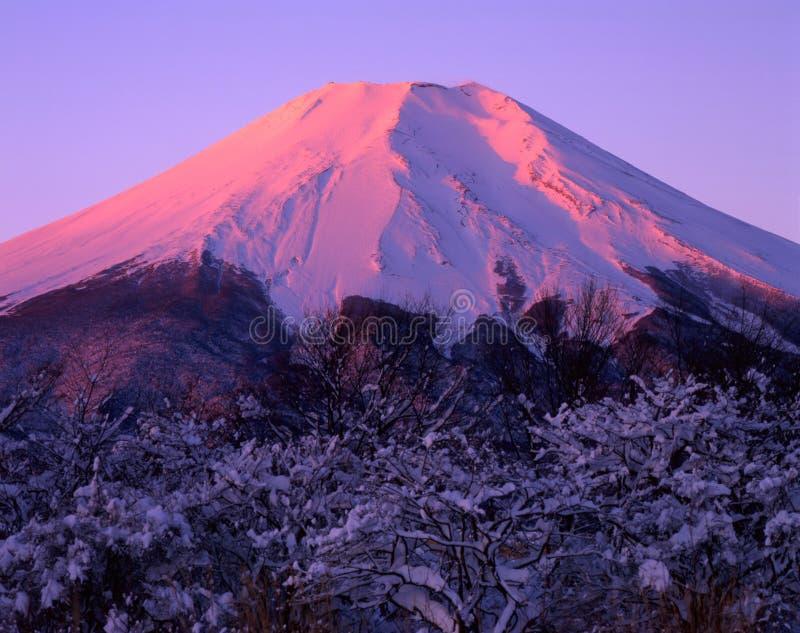 Mount Fuji CXV stock photos