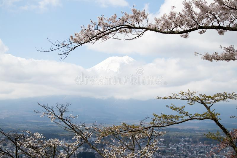 Mount Fuji that is the famous landmark in Japan with white cloud royalty free stock photography