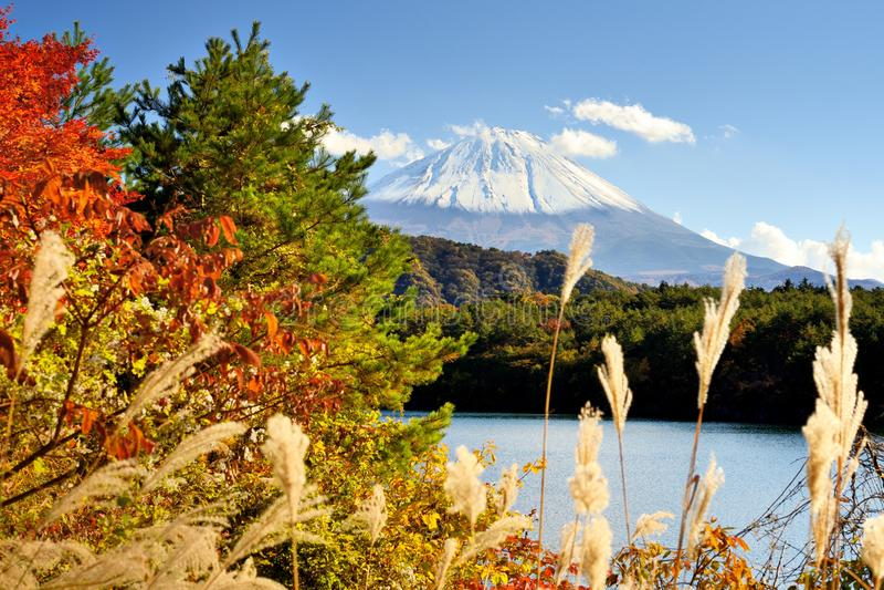 Mount Fuji i hösten royaltyfri fotografi
